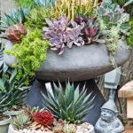 Centro-Garden-Succulent-Bowls