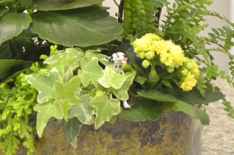 centro-spring-kids-arrangement-16